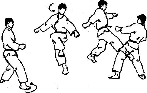 Техника каратэ - удары ногой